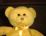 Jasper Bear, minutes taker.