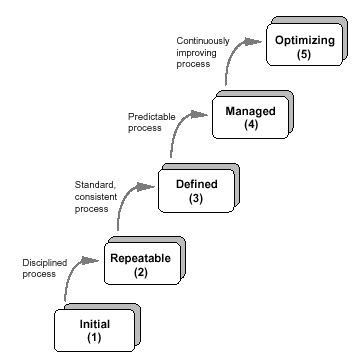 Traditional Software Configuration Management Process