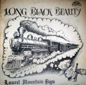 Bluegrass Discography: Viewing full record for Long black beauty