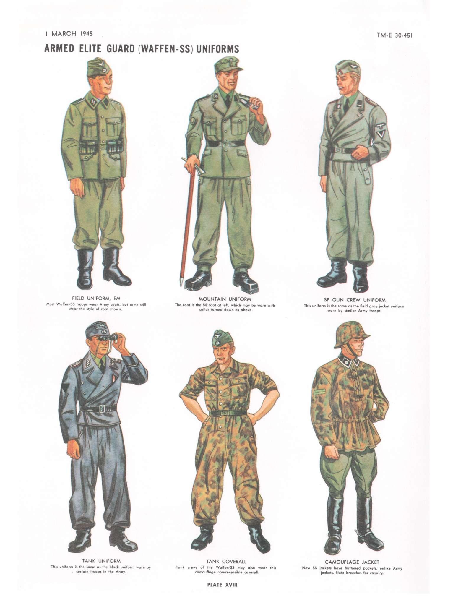 In general  Waffen-SS uniform  Waffen Ss Dress Uniforms