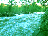 An image of the Haw River.