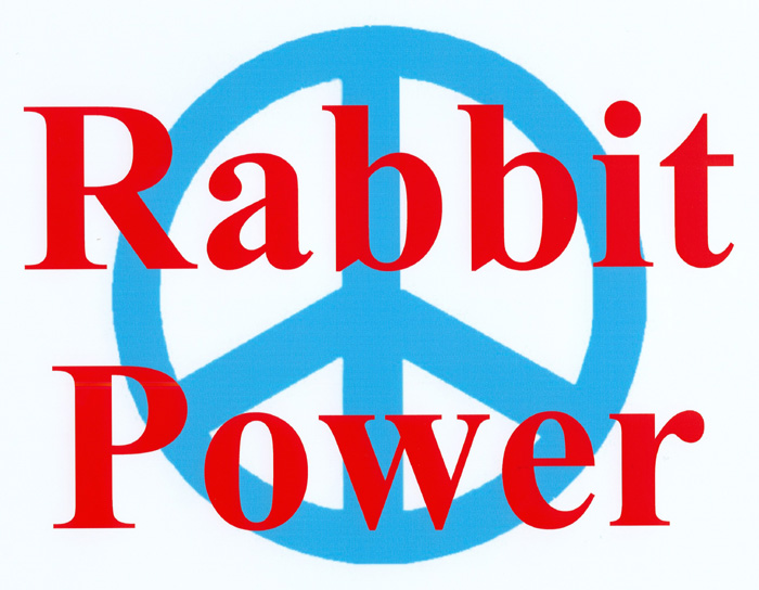 RABBIT                                           POWER!