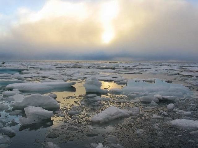 Watthead Energy News And Commentary Could The Arctic Be