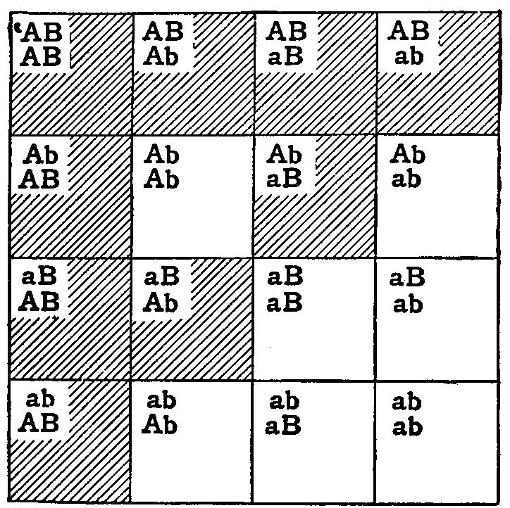 the project gutenberg ebook of mendelism  by reginald