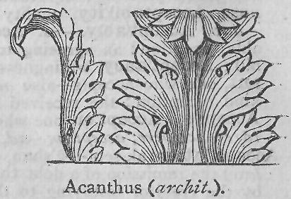 tacitus annales zusammenfassung