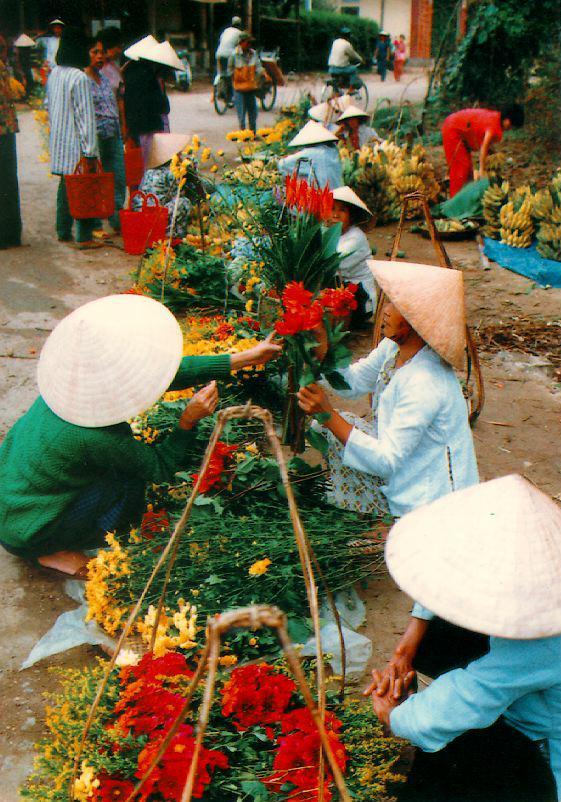 http://www.ibiblio.org/pub/multimedia/pictures/asia/vietnam/people/chohoa.jpg