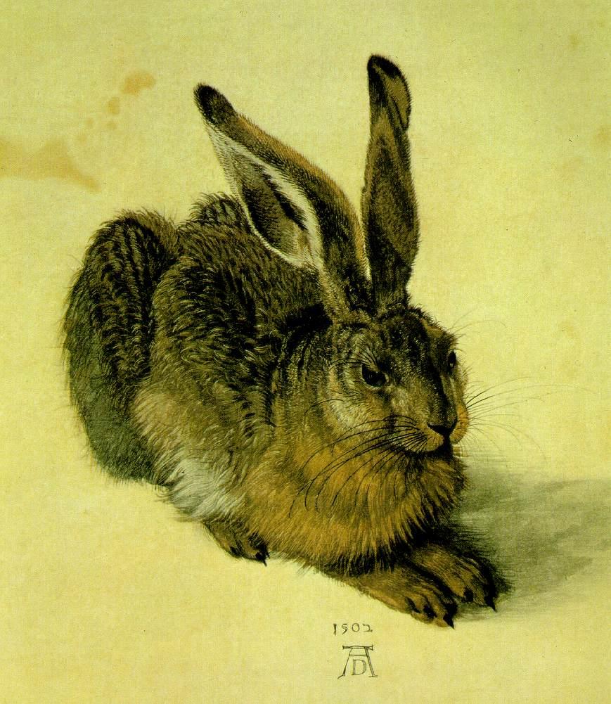 http://www.ibiblio.org/wm/paint/auth/durer/hare.jpg