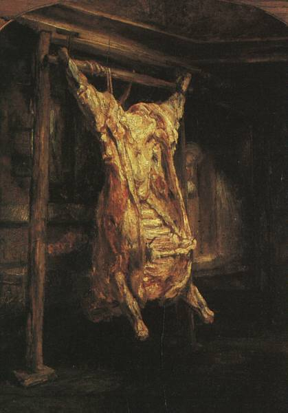 Slaughtered Ox by Rembrandt